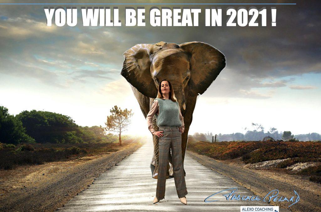 Er staat een kudde olifanten op uw werkvloer! Hoe aanpakken?