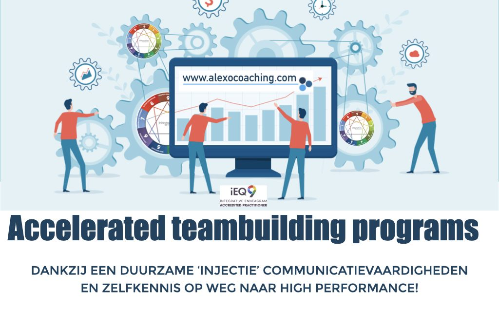 ROI Accelerating Teambuilding Programma's